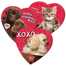 Russell Stover Assorted Chocolates Pets Heart