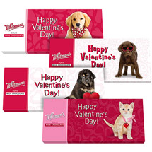 Whitman's Valentine's Pet Milk Chocolate Bar