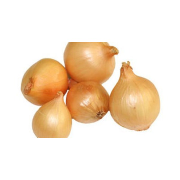 Fresh Pearl Onion