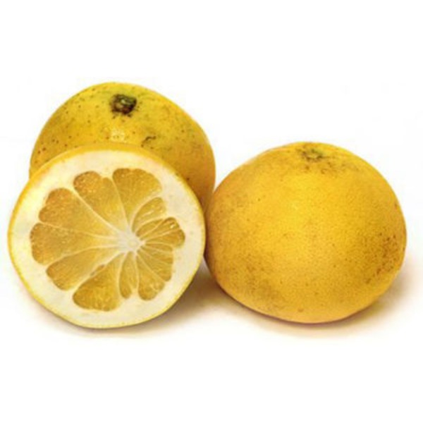 Fresh Melogold Grapefruit