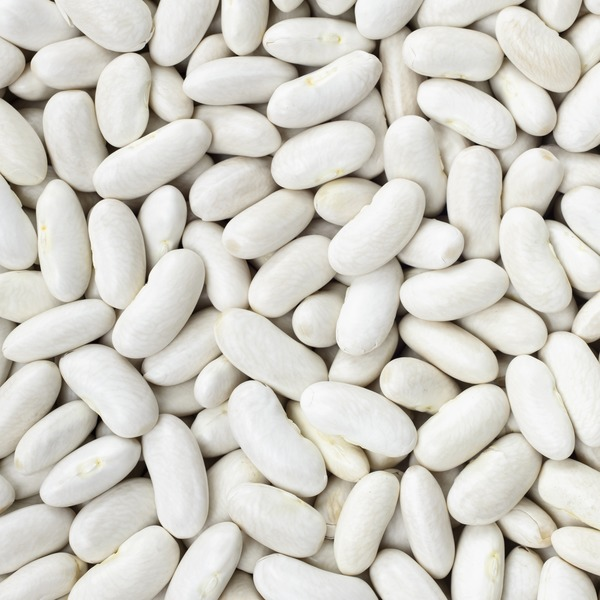 Organic Small White Navy Beans