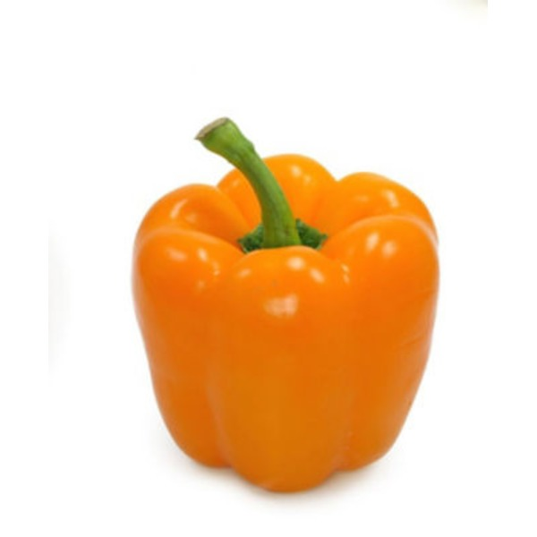 Fresh Organic Orange Bell Pepper