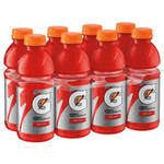 Gatorade Thirst Quencher Fruit Punch Sports Drink 8 Ct/160 Fl Oz