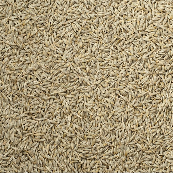 Farmers Direct Organic Hulled Barley