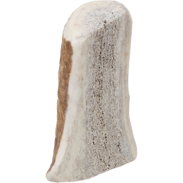 Prairie Dog Elk Split Antler Dog Chew