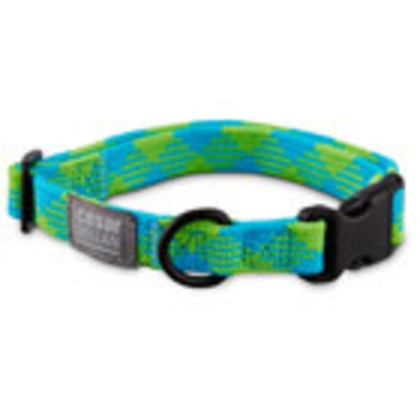 Cesar Millan Small Braided Dog Collar Blue/Lime