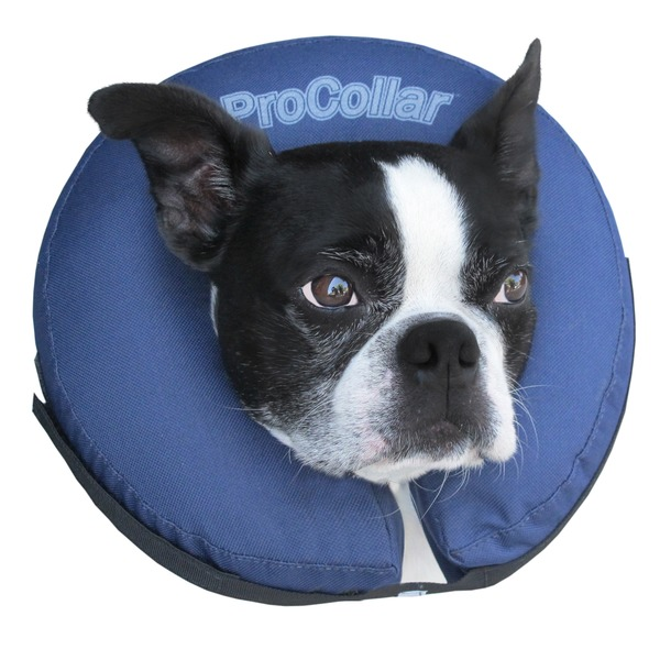 Pro Cone Medium Protective Collar
