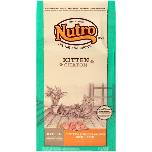 Nutro Wholesome Essentials Salmon & Brown Rice Recipe Adult Natural Cat Food
