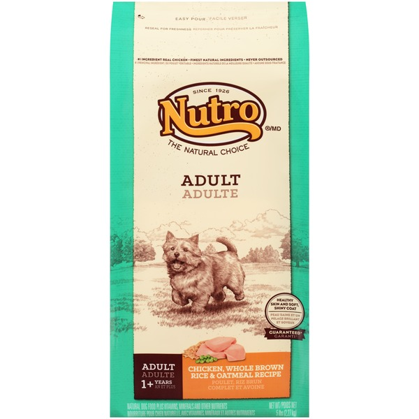 Nutro Wholesome Essential Farm-Raised Chicken, Brown Rice & Sweet Potato Recipe Adult Dog Food