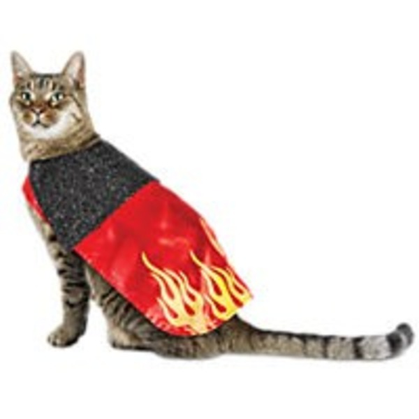 Halloween Cat Devil Costume
