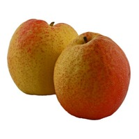 Red d'Anjou Pear