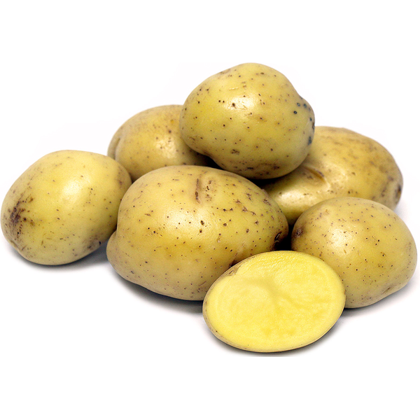 Yukon Gold Potatoes, Bag