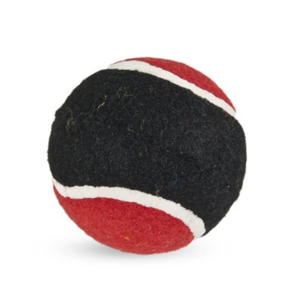 Petmate Large Dogzilla Tuff Tennis Ball