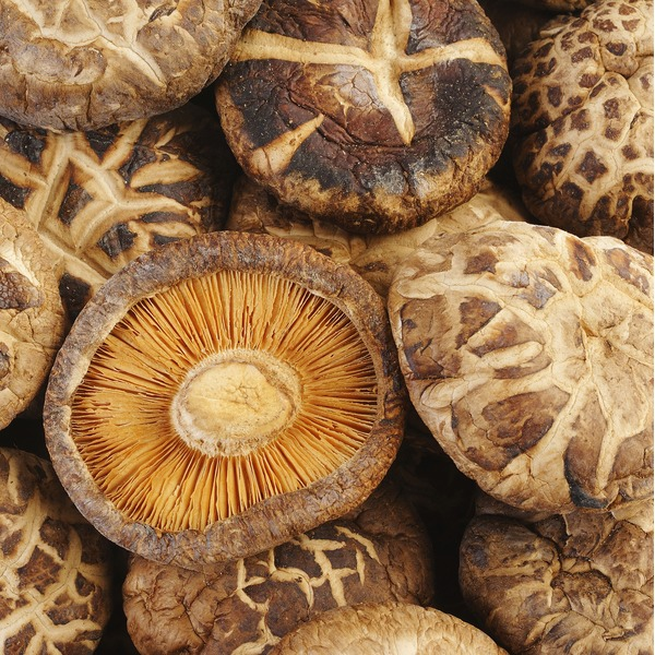 Organic Shiitake Mushrooms