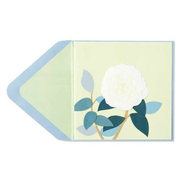 Papyrus White Rose Greeting Card