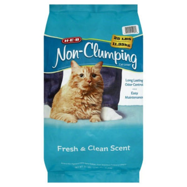 H-E-B Non-Clumping Fresh and Clean Scented Cat Litter