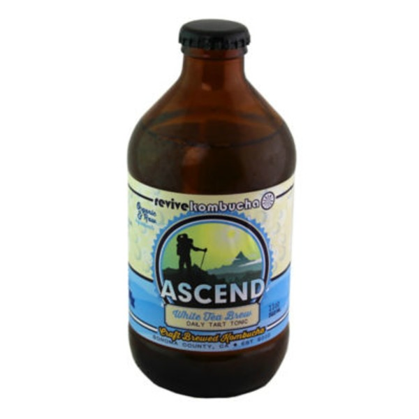 Revive Kombucha Brew White Tea Ascend