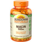 Sundown Naturals Niacin Vitamin Supplement Caplets