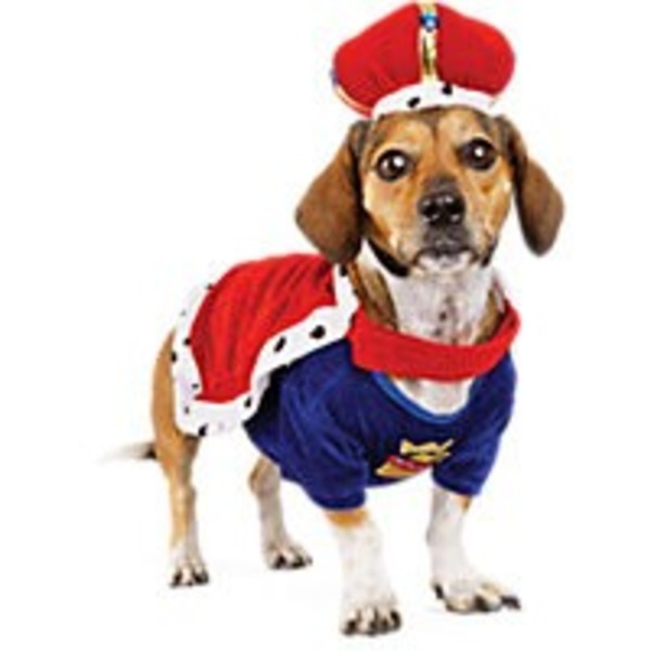 Extra-Large Halloween Dog King Costume