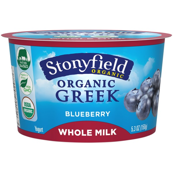 Organic Blueberry Greek Yogurt