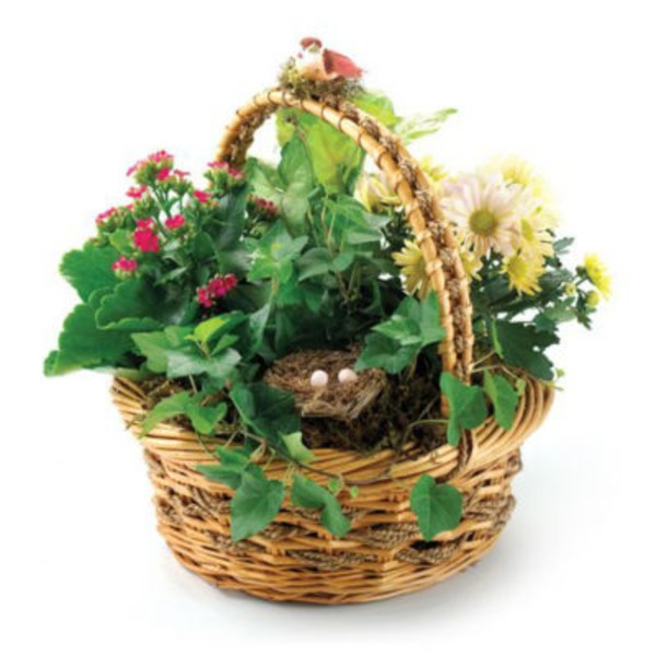 Floral Feather Your Nest Basic Planter