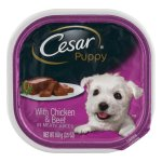 Cesar Puppy with Chicken & Beef Wet Dog Food Trays, 3.5 Oz