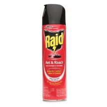 Raid Ant & Roach Killer Insecticide Spray-Outdoor Fresh - 17.5 oz