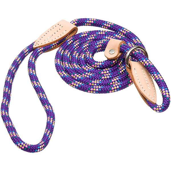Hamilton London Quick Purple Confetti Dog Collar & Leash Combo 6' L X 3/8