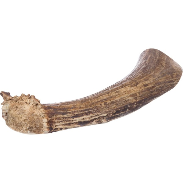 Prairie Dog Deer Split Antler Dog Chew