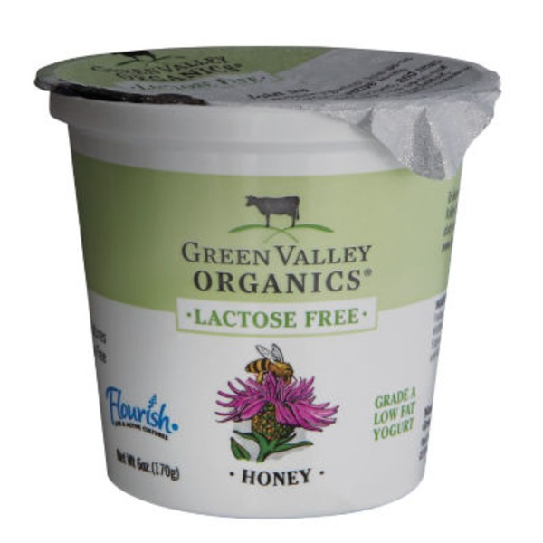 Green Valley Organics Organic Low Fat Honey Yogurt