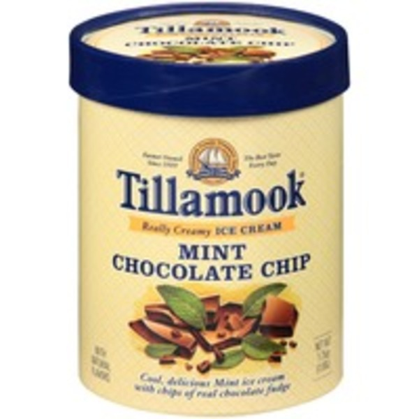 Tillamook Mint Chocolate Chip Ice Cream