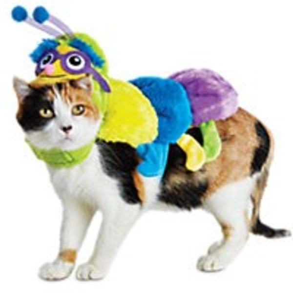 Halloween Catepillar Costume