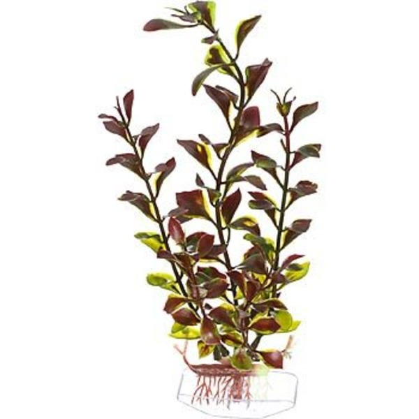 Petco Red & Green Ludwigia Background Plastic Aquarium Plant
