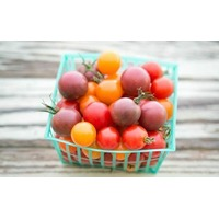 Organic Mixed Medley Heirloom Cherry Tomatoes