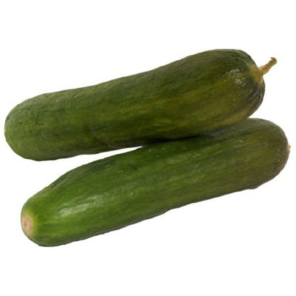 Fresh Persian (Armenian) Cucumber
