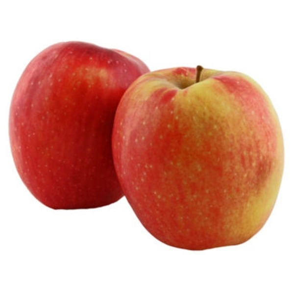Organic Pacific Rose Apples