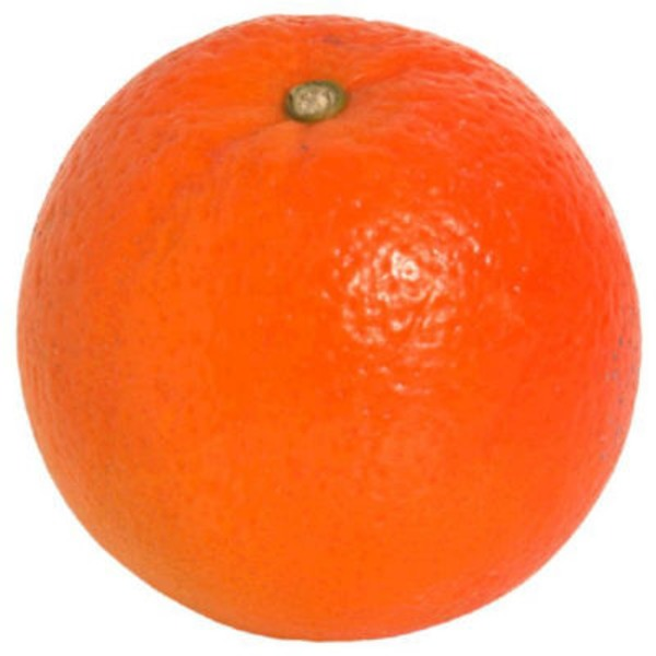 Small Navel Oranges