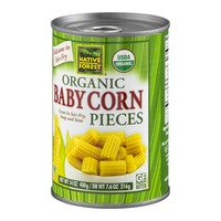 Native Forest Organic Baby Corn Pieces