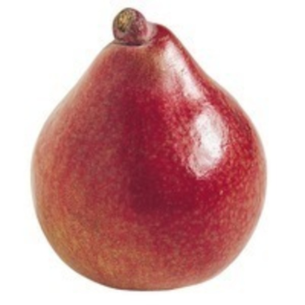 Organic Red D'Anjou Pear