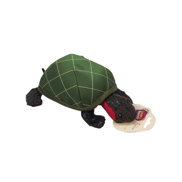 Leaps & Bounds Medium Plush Turtle