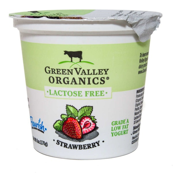 Green Valley Organics Organic Lactose Free Strawberry Yogurt