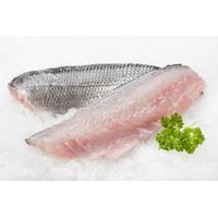 Fresh Wild Pacific Sea Bass Fillet