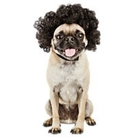 Halloween Small/Medium Disco Wig