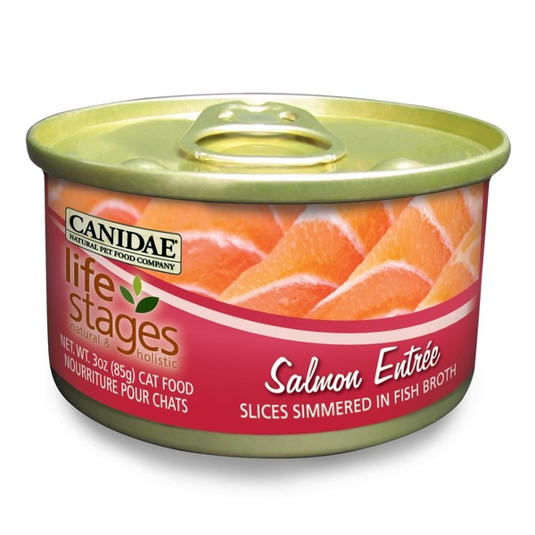Canidae Life Stages Salmon Canned Cat Food 3 Oz.