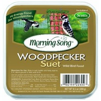 Morning Song Woodpecker Suet Wild Bird Food