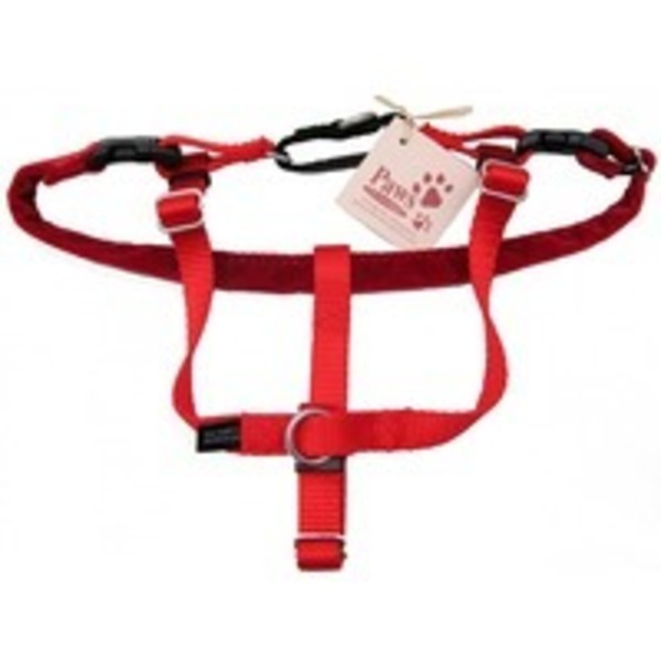 Good2 Go Small No Pull Harness Red