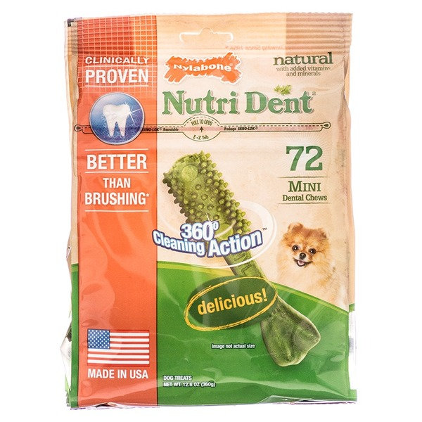 Nylabone Mini Edible Dental Chews Dog Treats