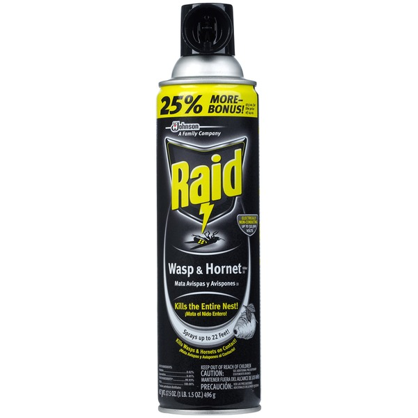 Raid Wasp & Hornet Killer 33 Insecticide