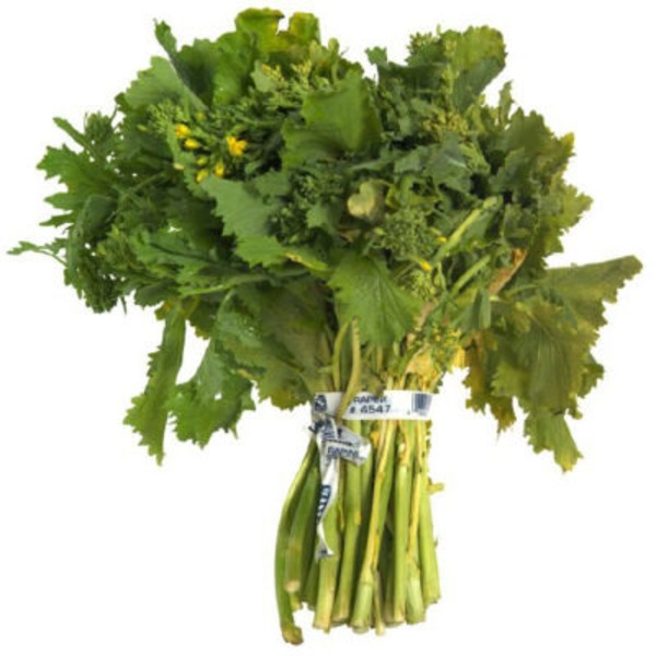 Andy Boy Rapini (Rabe)