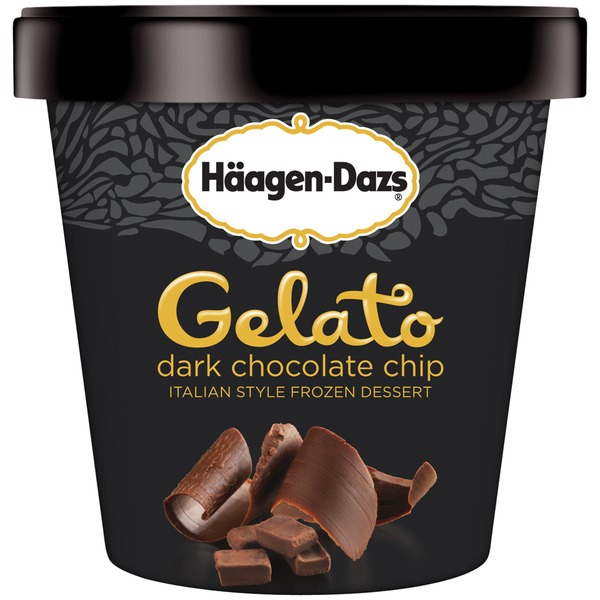 Haagen-Dazs Dark Chocolate Chip Gelato